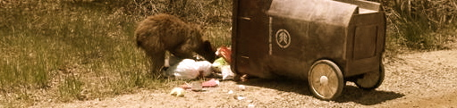 County Bear and Trash Ordinance