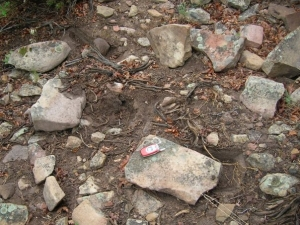rocks turned over for insects