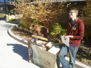 Bear Smart table at Fort Lewis College