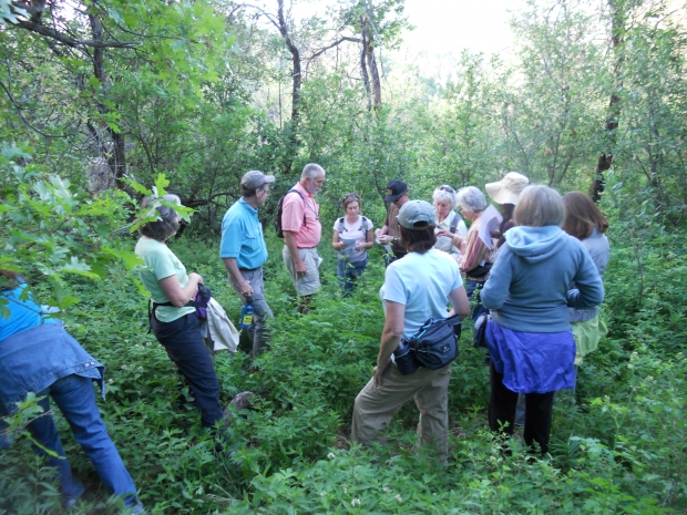 Hike in Bear Country with Bear Smart-JUL 8