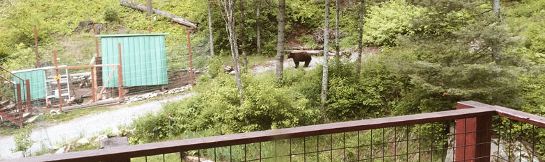 Missoula ordinance: Electric fencing for bears