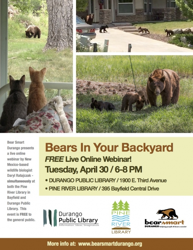 """Bears In Your Backyard"" Online Webinar at Bayfield and Durango Libraries"