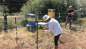 Electric Fencing Incentive